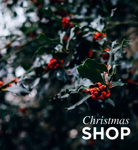 NOW OPEN CHRISTMAS SHOP