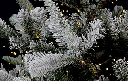 SHOP CHRISTMAS TREES & WREATHES