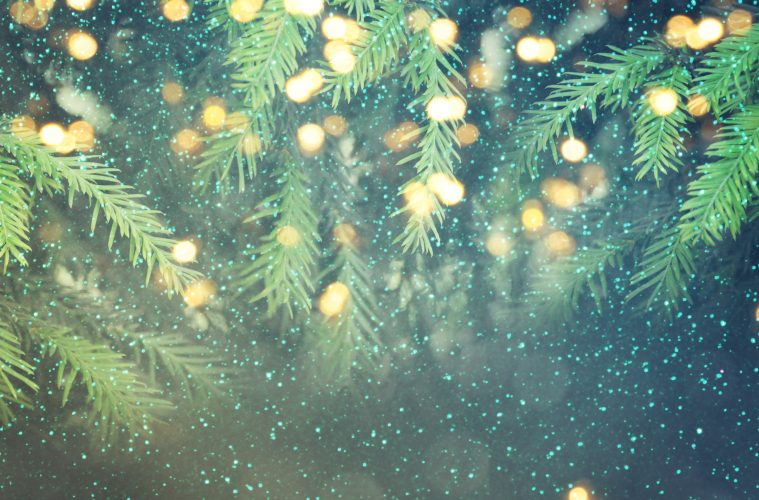 Set The Scene With Your Christmas Tree Fishpools Lifestyle