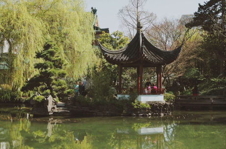 Family at Chinese gardens in park