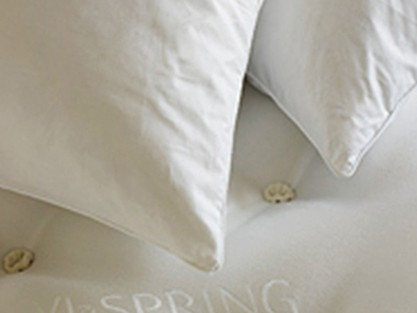 EXPLOREVISPRING PILLOWS