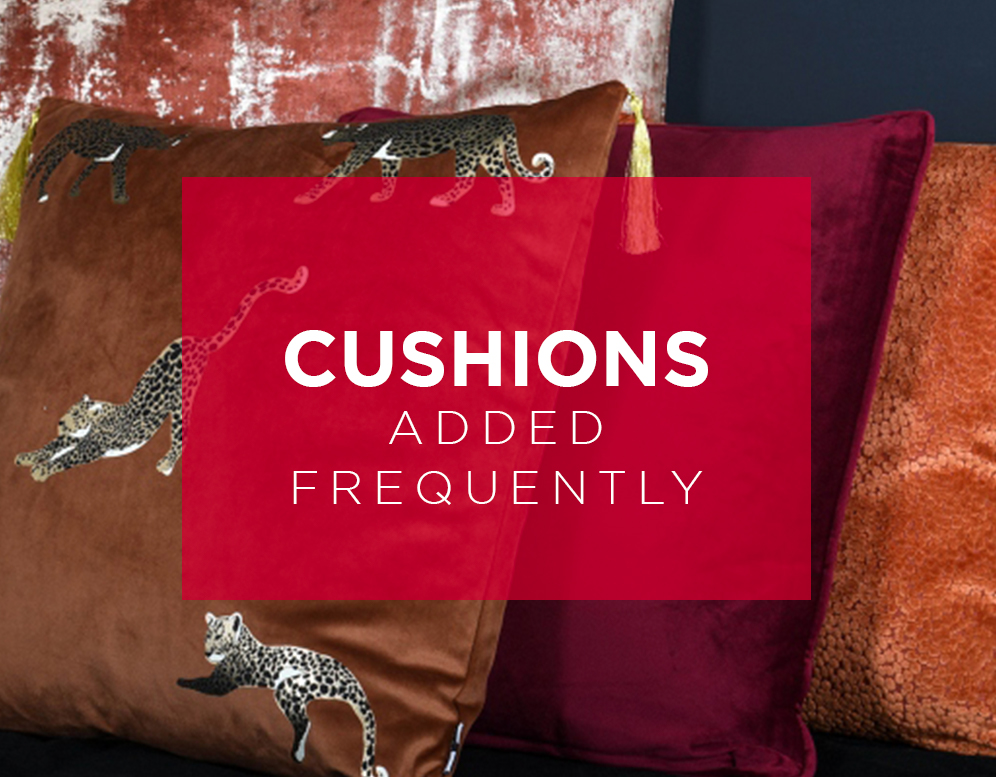 Shop New Cushions