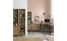 Bremen Oak Office Collection